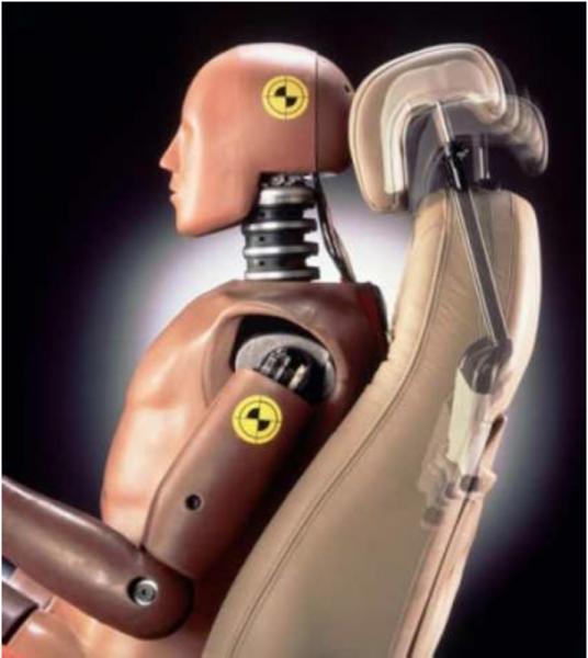 Crash car test dummy with typical head forward posture
